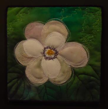 Summer_magnolia