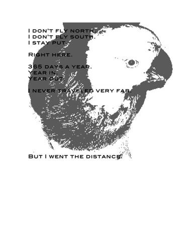 Birdspeech